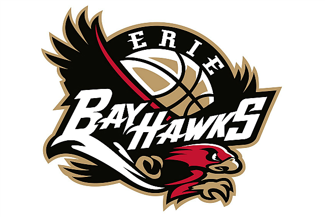 Magic Buy D-League BayHawks, Team Florida-Bound